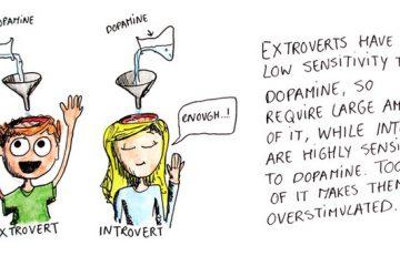 Introvert Sensitivity To Dopamine