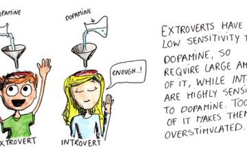 Introvert Sensitivity To Dopamine